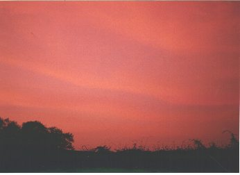 English  Sky during 1999 eclipse of the sun